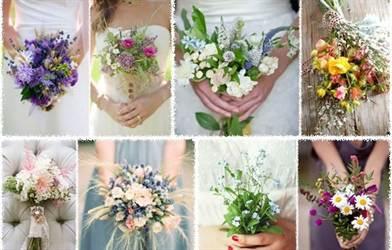 полевые и садовые цветы 3